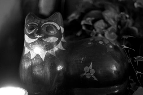 夢占い【猫(ねこ・ネコ)】の意味・解釈
