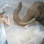 夢占いで象の意味/解釈は?!勇気やエネルギーを暗示します。