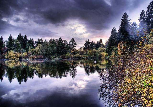 夢占い 池