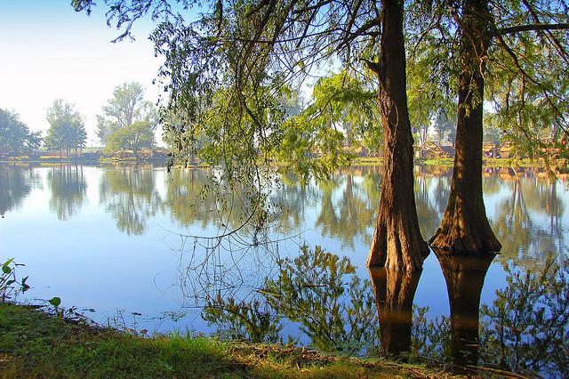 夢占い 湖