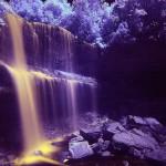 夢占い 滝