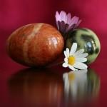 夢占いで石の意味/解釈は?!強さ・硬さ・頑固さを意味します。