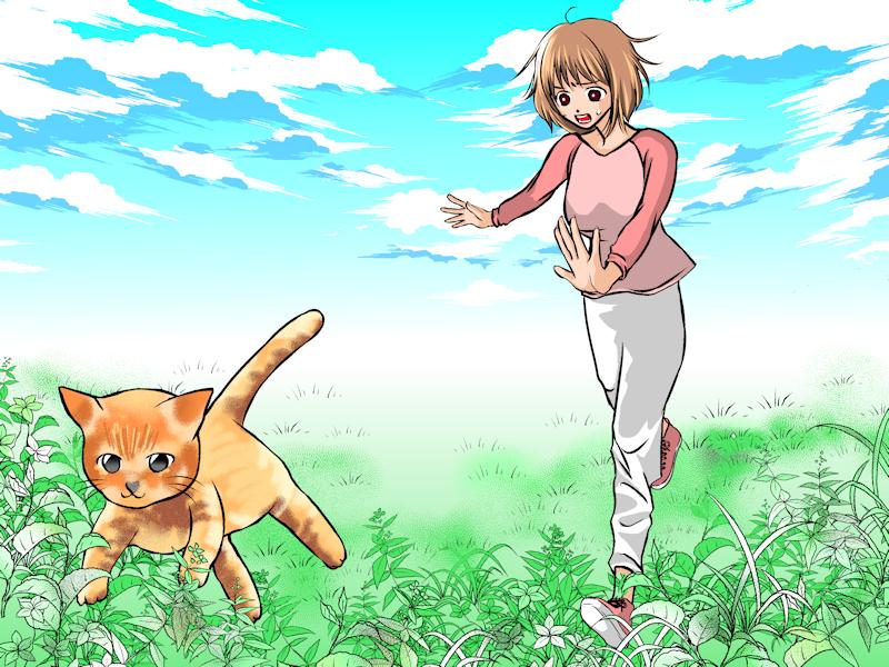 夢占いで猫(ねこ・ネコ)の意味・解釈 30選 |わがままなな人にふりまわされる夢?