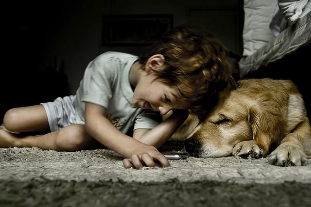 夢占いでペットの意味/解釈は?!もっと可愛がられたい思いを意味します。