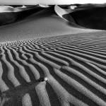 夢占い 砂漠