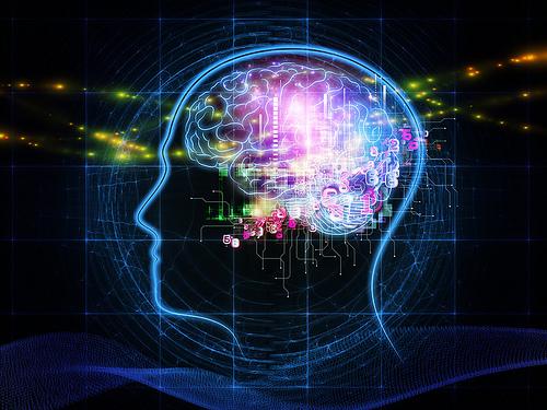 夢占いで脳の意味/解釈は?!能力・才能・理性・幸運を表わしています。