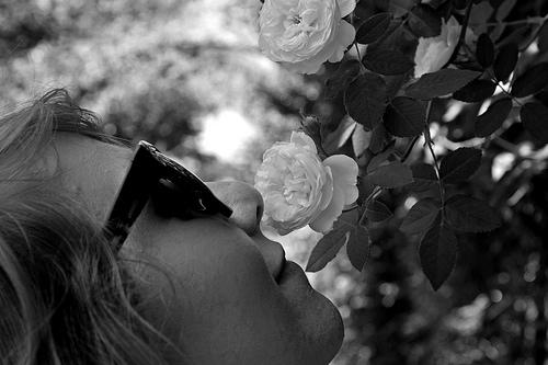 夢占いで匂いの意味/解釈は?!匂いが良い印象の場合は吉夢を表わしています。