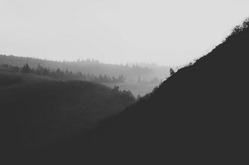 夢占いで谷の意味/解釈は?!谷間が光輝いているような夢は吉兆です。