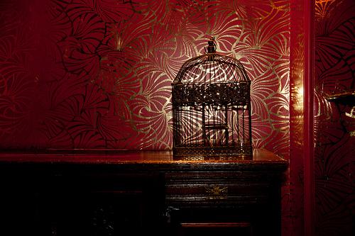 夢占いで鳥かごの意味/解釈は?!制約の中にいる状況を表しています。